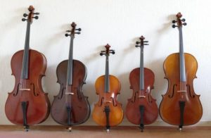 Cello's in de verhuur