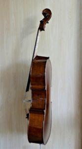 Cello Kalyke zijaanzicht